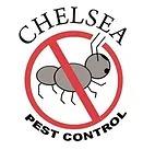 CHELSEA PEST AND TERMITE CONTROL, INC. Logo